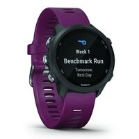 Garmin Forerunner 245 Fitness Watch -  berry