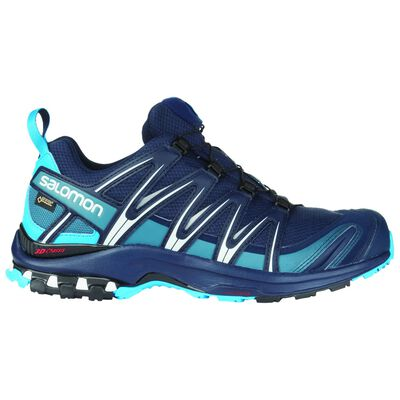 Salomon Men's XA Pro 3D GTX Trail Running Shoe